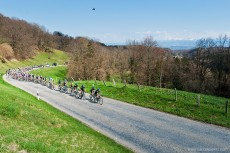 The pack climbs the Col du Mollendruz at the Tour de Romandie April 24, 2013.